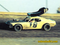 TERRY RICHARDS MUSTANG WITH WING